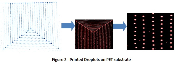 Printed Droplets on PET substrate