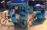 Pedal Assisted High Power E-rickshaw